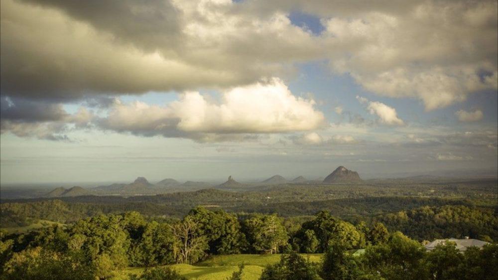 Mary Cairncross Rainforest Walk