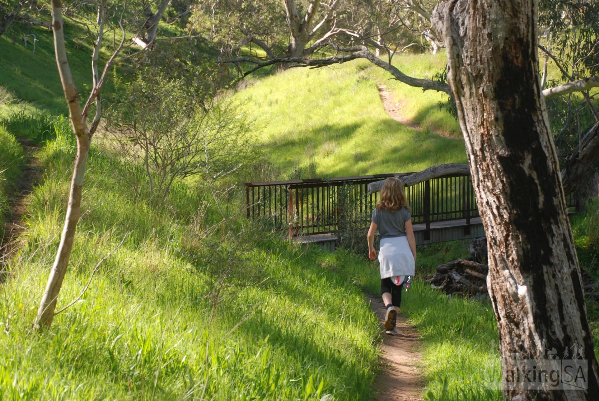 Mike Green Trail