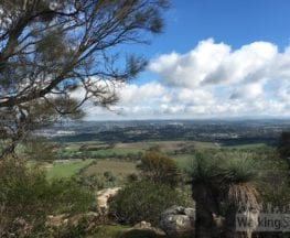 Mount Barker Summit Walking Trail