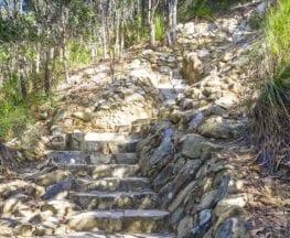 Mount Coolum Summit Track