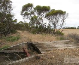 Nurragi Conservation Walking Trail