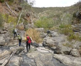 Onkaparinga Gorge Trek