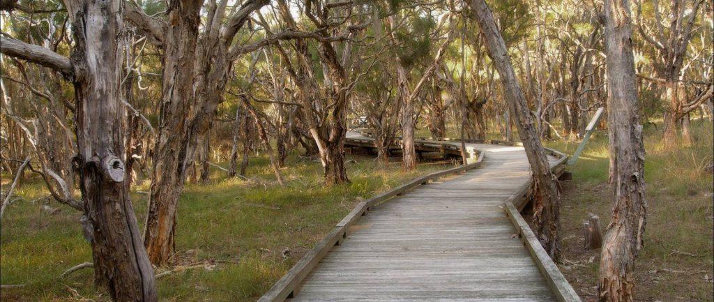 Purga Nature Reserve Trails