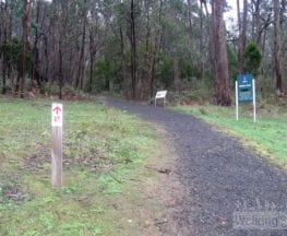 The Nature Trail - Mt Lofty Botanical Gardens