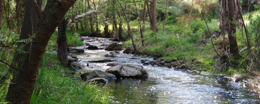 Upper Sturt Gorge River Circuit