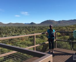Wangara Lookout Hike