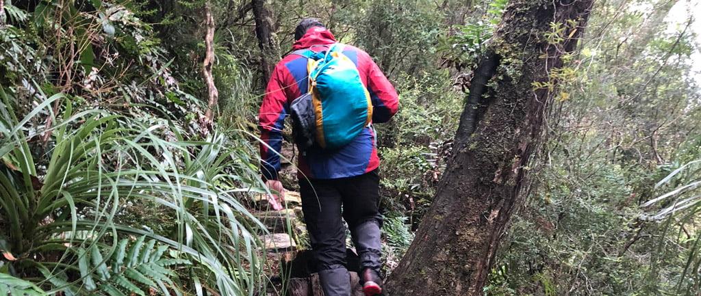 Montem Diadema 18L Hiking Daypack