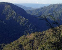Wet Tropics Great Walk Girringun National Park
