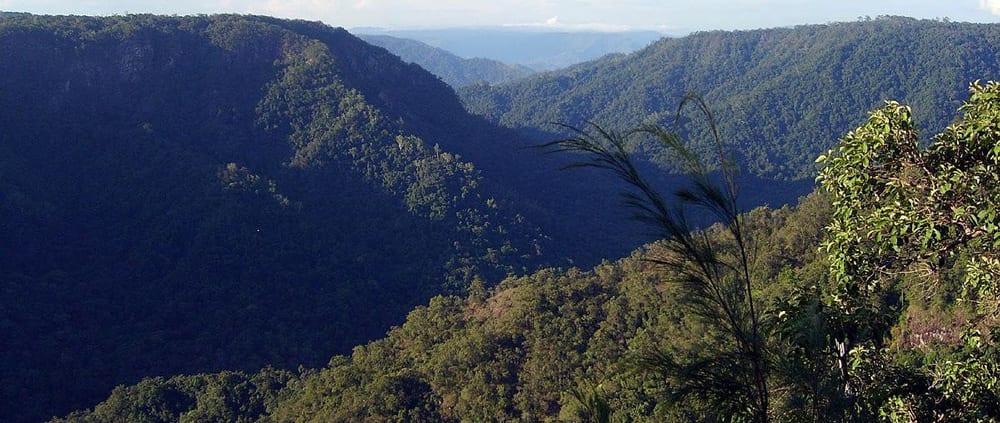 Wet Tropics Great Walk Girringun National Park