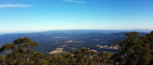 Toolangi State Forest – Myrtle Gully Circuit, Tanglefoot Loop and Mt St Leonard