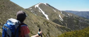 Falls to Hotham Track Impact Grows
