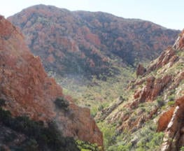 The Larapinta Trail Journey Trail Hiking Australia