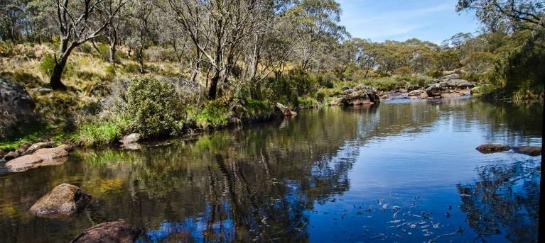 Aeroplane Hill walking track Trail Hiking Australia
