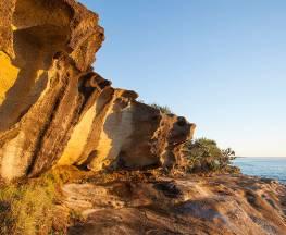 Angourie to Brooms Head Trail Hiking Australia
