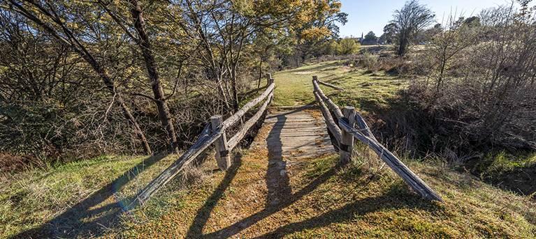 Bald Hill walking track Trail Hiking Australia
