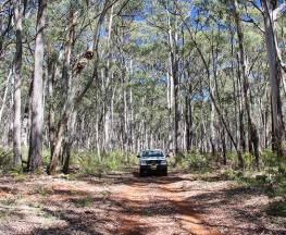 Barraba track Trail Hiking Australia