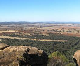 Basin Gully to Eualdrie lookout track Trail Hiking Australia