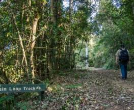 Basin loop track Trail Hiking Australia