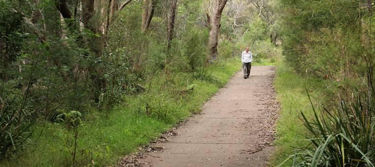 Bellamy fire trail Trail Hiking Australia