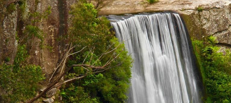 Belmore Falls walking track Trail Hiking Australia
