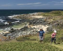 Bingi Dreaming track Trail Hiking Australia
