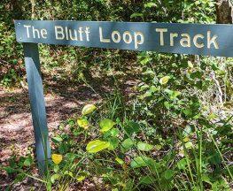 Bluff loop walking track Trail Hiking Australia