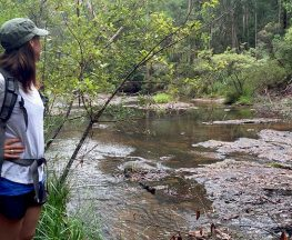 Boggy Creek walk Trail Hiking Australia