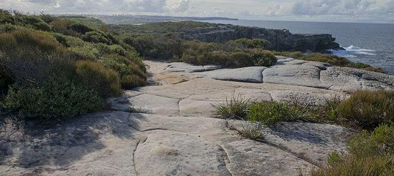 Boora Point walking track Trail Hiking Australia