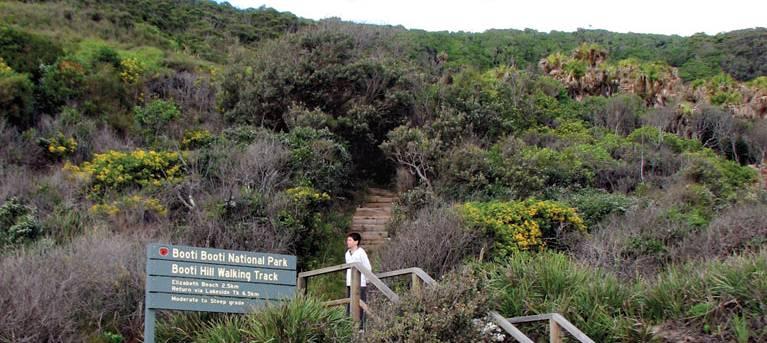 Booti Hill and Wallis Lake walking track Trail Hiking Australia
