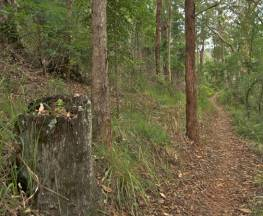 Border loop walk Trail Hiking Australia