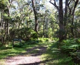 Border walk Trail Hiking Australia