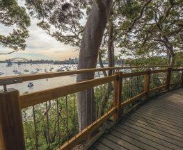 Bradleys Head to Chowder Bay walk Trail Hiking Australia