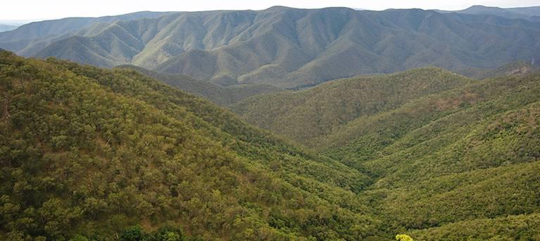 Budds Mare to Riverside walking track Trail Hiking Australia