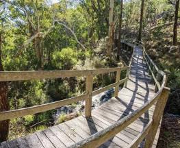 Bundabulla circuit walking track Trail Hiking Australia