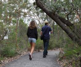 Bungoona lookout and path Trail Hiking Australia
