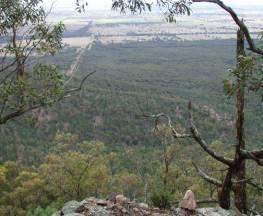 Burrabadine walking track Trail Hiking Australia