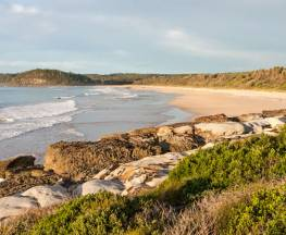 Burrawang track - Conjola Beach to Buckleys Point Trail Hiking Australia
