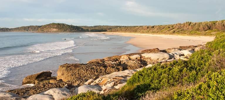 Burrawang track - Conjola Beach to Buckleys Point Trail Hiking Australia