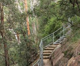 Caleys lookout track Trail Hiking Australia