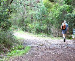 Cascades trail Trail Hiking Australia