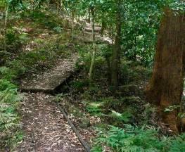 Cascades walk Trail Hiking Australia
