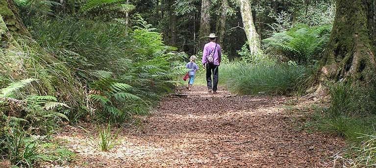 Cascades walking track Trail Hiking Australia