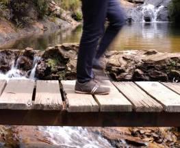 Charles Darwin walk Trail Hiking Australia