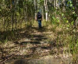 Cliff Face track Trail Hiking Australia