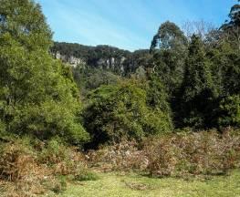Clover Hill trail Trail Hiking Australia