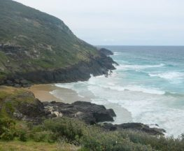 Connors walking track Trail Hiking Australia