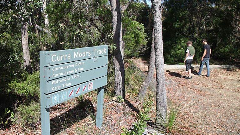Curra Moors loop track Trail Hiking Australia