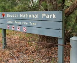 Daleys Point walking track Trail Hiking Australia