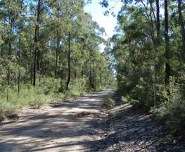 Deadmans mountain bike loop Trail Hiking Australia