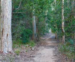 Delta track Trail Hiking Australia